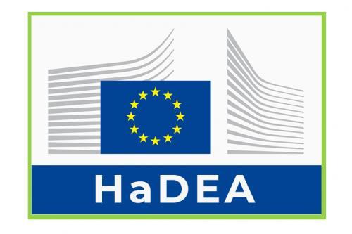 Foto 1 - CALL FOR EXPERT - HaDEA