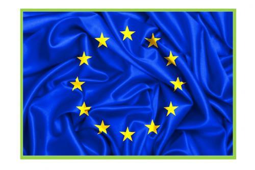 Foto 1 - CALL FOR EU EXPERT