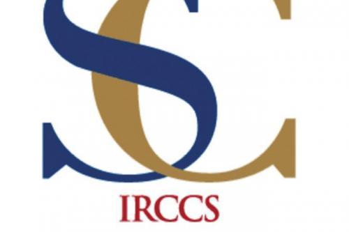 Foto 1 - RICERCA PERSONALE-IRCCS SAN CAMILLO