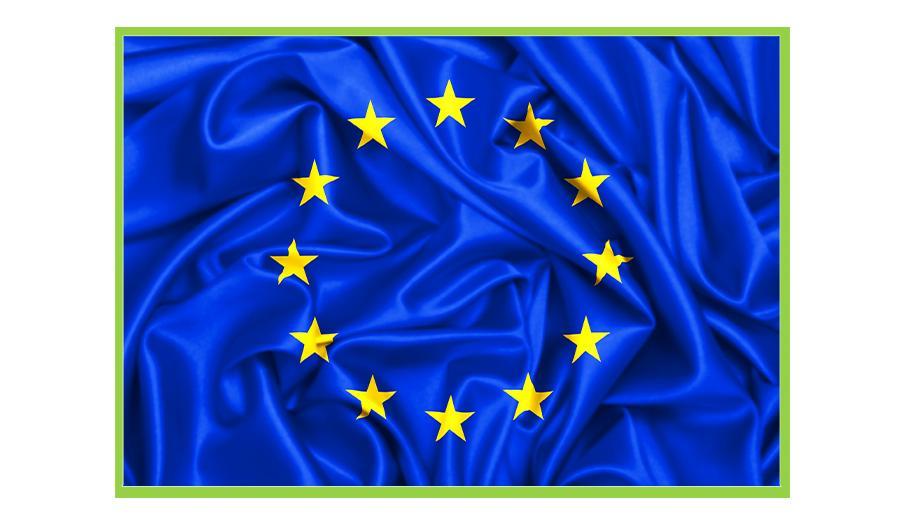 CALL FOR EU EXPERT